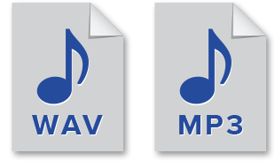 WAV and MP3 file type format