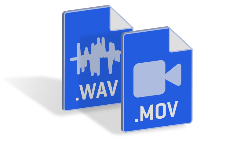 .wav and .mov file types